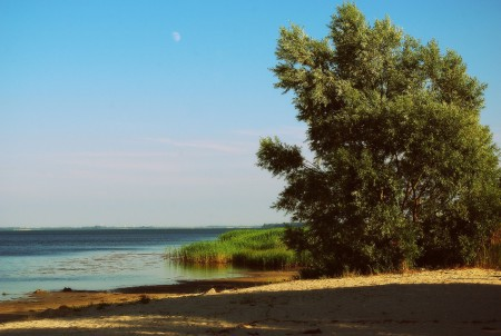Strand in Barhöft - Wasser leider nur knietief