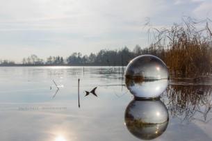 ein morgendlicher Spaziergang an den Fischteichen